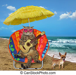 Cat with a guitar in a sun lounger