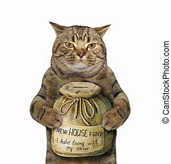 Cat with a money box