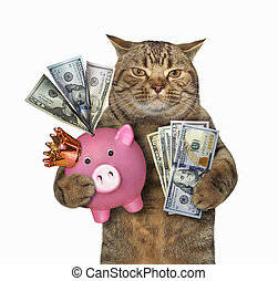 Cat with a pink piggy bank