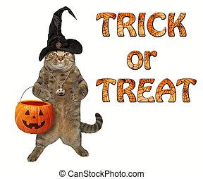 Cat with a pumpkin basket 2
