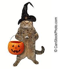 Cat with a pumpkin basket