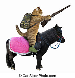 Cat with a rifle on a black horse