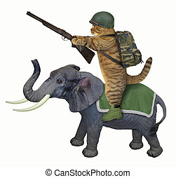 Cat with a rifle on an elephant