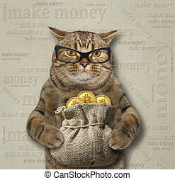 Cat with a sack of bitcoins 3