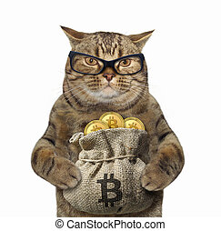 Cat with a sack of bitcoins
