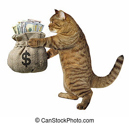 Cat with a sack of money
