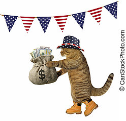 Cat with a sack of money under flags