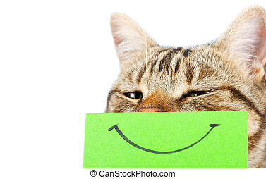 Cat with a smile