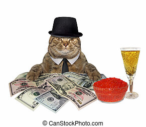 Cat with champagne and money 2