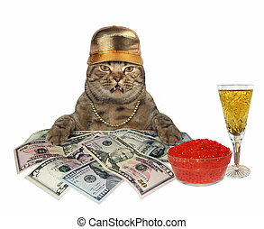 Cat with champagne and money