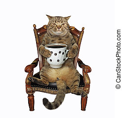 Cat with coffee in an armchair