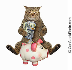 Cat with dollars near a piggy bank