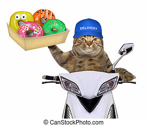 Cat with donuts on the scooter 2