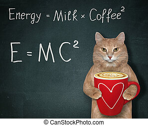 Cat with energy coffee 2