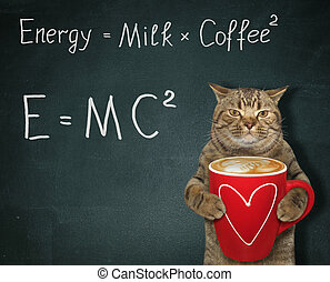 Cat with energy coffee