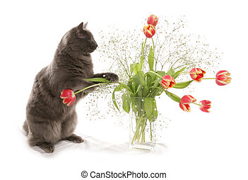 cat with flowers in a vase