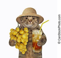 Cat with grape juice 2