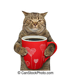 Cat with large cup of coffee