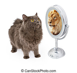 Cat With Lion Reflection in Mirror - Conceptual image of a...