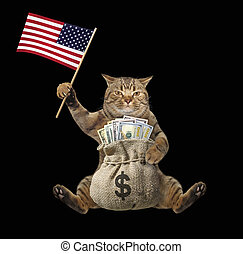 Cat with money and us flag 2