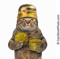 Cat with pile of bitcoins