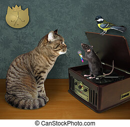 Cat with rat near record player 2