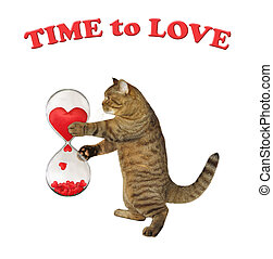 Cat with romantic hourglass 2