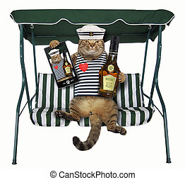Cat with rum is on a swing bench