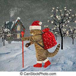 Cat with sack of gifts near house 2