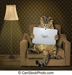 Cat with tablet on armchair