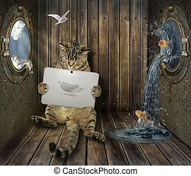 Cat with tablet on ship
