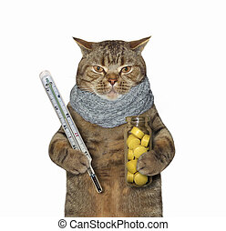Cat with thermometer and pills 2
