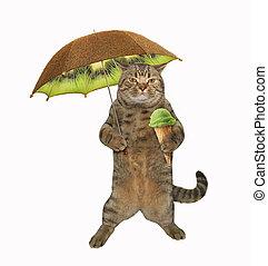 Cat with umbrella 2