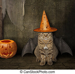 Cat with wings in a witch hat