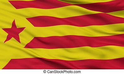 Catalan Nationalism Flag Closeup Seamless Loop - Catalan...
