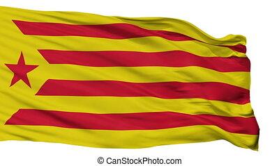 Catalan Nationalism Flag Isolated Seamless Loop - Catalan...