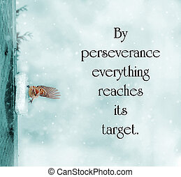 Catalan proverb with inspirational words about perseverance...