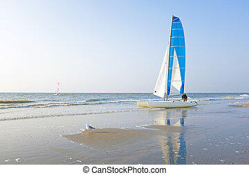 Catamaran at the beach from the north sea in the Netherlands