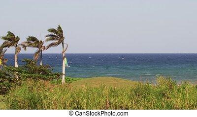 Catamaran sail boat Caribbean sea - Catamaran sailing along...