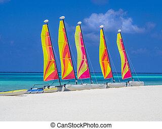 Catamaran sailboats