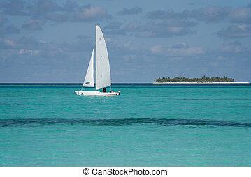 Catamaran - Sailing catamaran on the ocean. Island in the ...