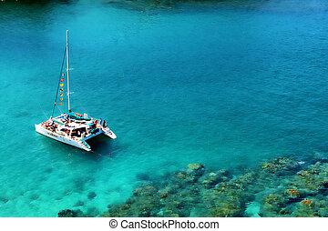 Catamaran - Snorkeling
