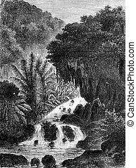 Cataract in Ambon, vintage engraving. - Cataract in Ambon, ...