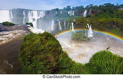 cataratas, 上に, iguazu, 滝, ブラジル, 虹, del