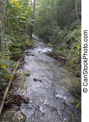 Catawba Falls Lush Forest Stream - A long, lush, rocky,...