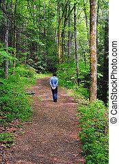 Catawba Trail Solitude