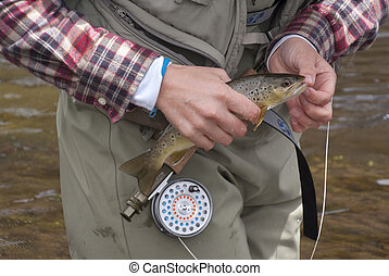 Catch and Release - An angler displays her catch in the...