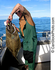 Catching Halibut in Alaskan Waters - Man holds a halibut ...