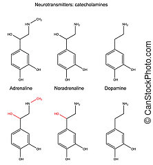 Catecholamines - Structural chemical formulas of ...