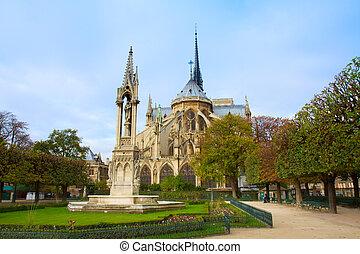 catedral dama notre, parís francia